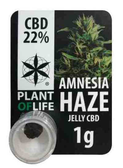 CBD JELLY 22% AMNESIA HAZE > Plant Of Life