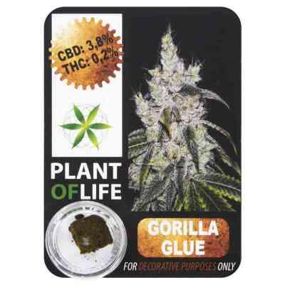 CBD Hash 3.8% Gorilla Glue