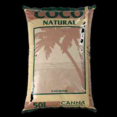 COCO NATURAL MEDIUM > CANNA
