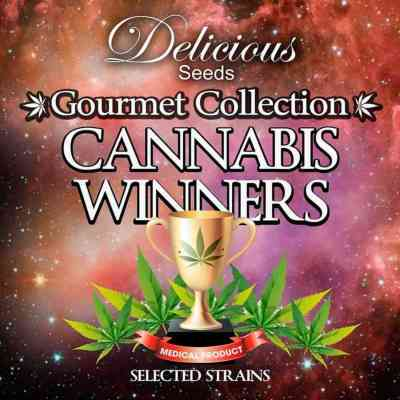Gourmet Coll. Cannabis Winners 1 > Delicious Seeds
