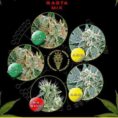 Rasta Mix Seed > Green House Seed Company