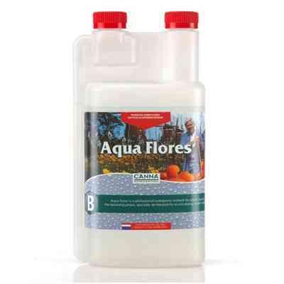 AQUA FLORES B > Canna