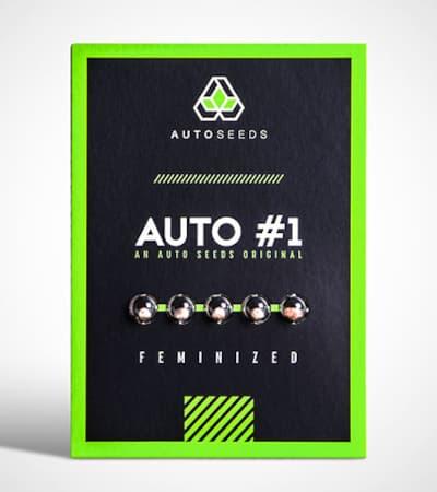 Auto #1 > Auto Seeds