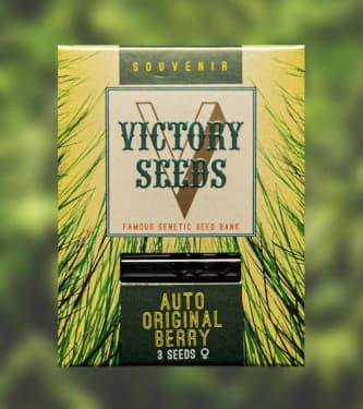 Auto Original Berry > Victory Seeds