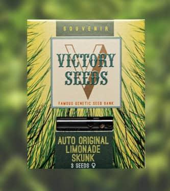 Auto Original Limonade Skunk > Victory Seeds