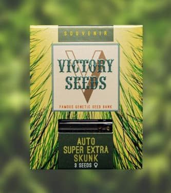 Auto Super Extra Skunk > Victory Seeds