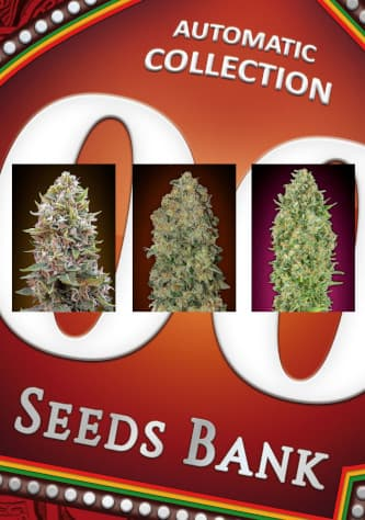 Automatic Collection #1 > 00 Seeds Bank