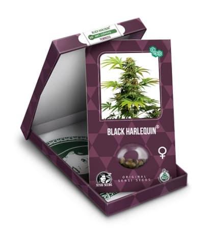 Black Harlequin > Sensi Seeds