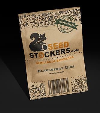 Blackberry Gum Auto > Seed Stockers
