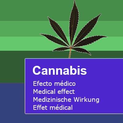 Efectos medicos