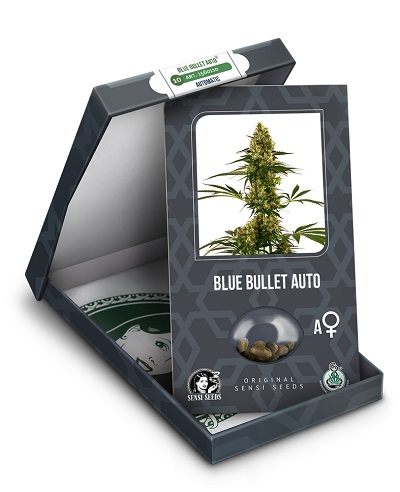 Blue Bullet Auto > Sensi Seeds