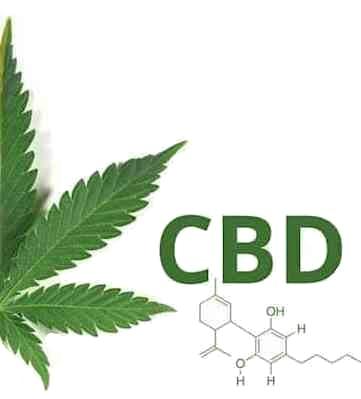 Semillas de cannabis medicinal CBD