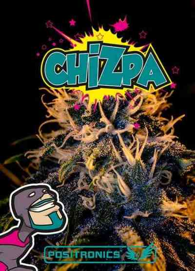 Chizpa > Positronics