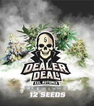 Dealer Deal XXL Automix > BSF Seeds