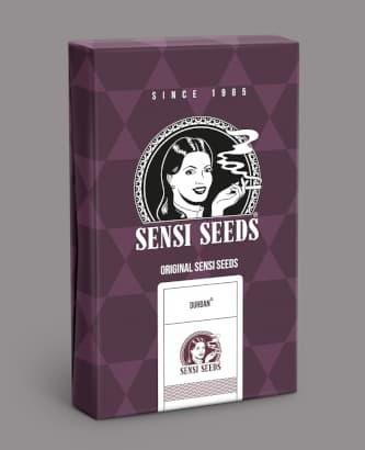 Durban > Sensi Seeds