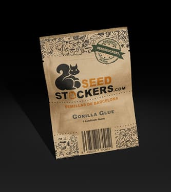 Gorilla Glue Auto > Seed Stockers