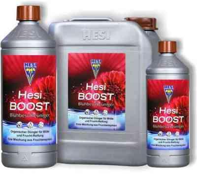 HESI BOOST > Hesi