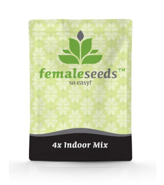 Indoor Mix > Female Seeds