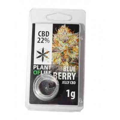 CBD Jelly 22% Blueberry > Plant Of Life