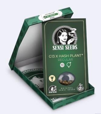 Mr. Nice G13 X Hash Plant > Sensi Seeds