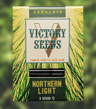 Northern Light > Victory Seeds