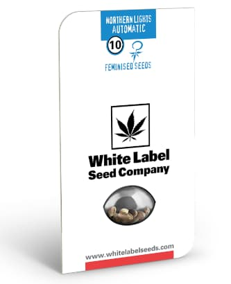 Northern Lights Automatic > White Label Seeds