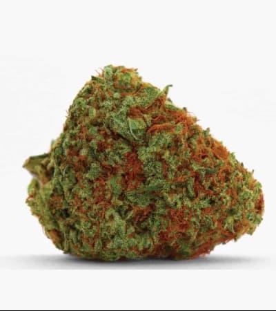 Original Orange Bud > Bulk Seed Bank