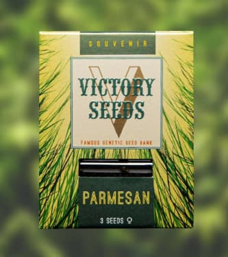 Parmesan > Victory Seeds