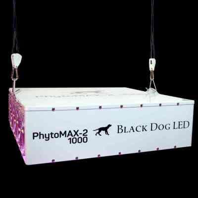PhytoMAX-2 1000 Grow Lights > Black Dog LED