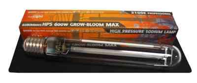 HPS 600W Blüte MAX > Pure Light