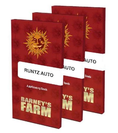 Runtz Auto > Barneys Farm