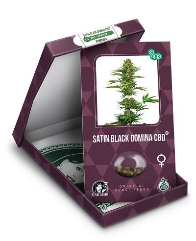 Satin Black Domina CBD > Sensi Seeds