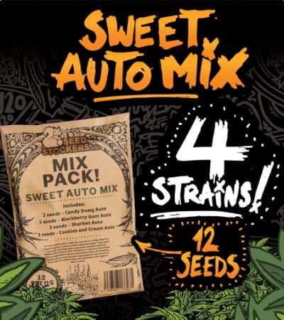 Sweet Auto Mix > Seedstockers