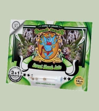 Sweet Skunk Auto > Sweet Seeds