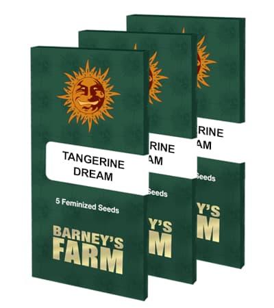 Tangerine Dream > Barney`s Farm