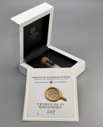 Vetrus OG > Aficionado French Connection